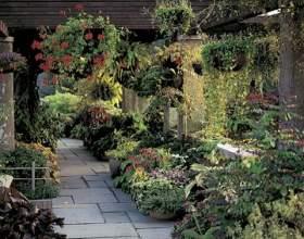 Дизайн саду своїми руками фото