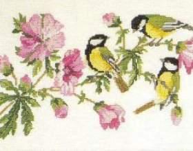 Схема вишивки синиці на гілці мальви фото