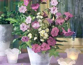 Схеми визнаних гачком квітів - фіалки маки троянди кали фото